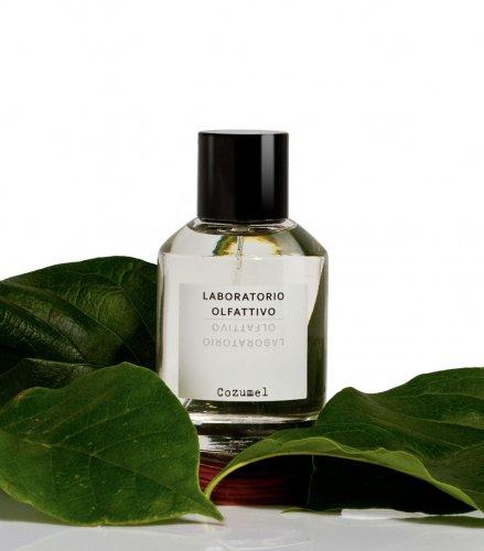 laboratorio olfattivo cozumel