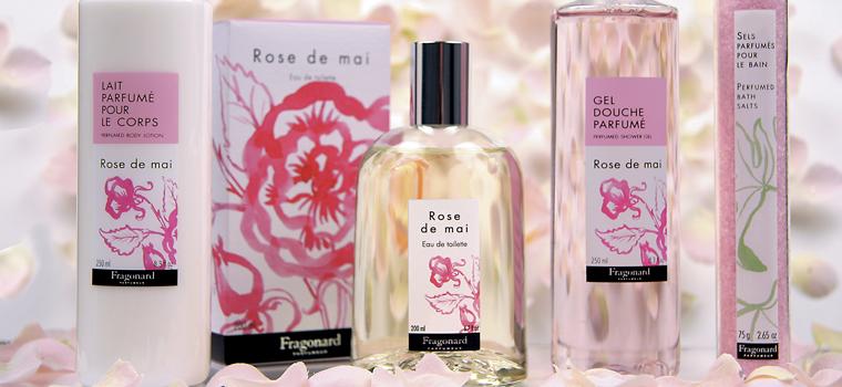 rose_www_Perfumeria Greta_Żywiec